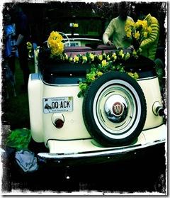 daf-lw-car4