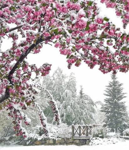 15sound snow melt