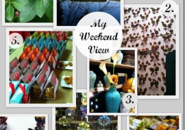 5 Reasons to Love My Weekend View