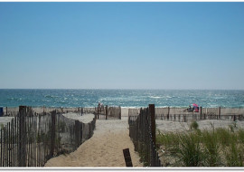 Have You Ever Been to Fire Island?