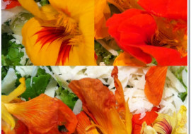Meatless Monday with Nasturtiums in Your Kitchen