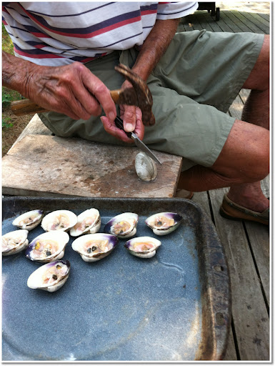 Opening clams for recipes.
