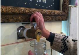 Local Creatives-Follow the Honey