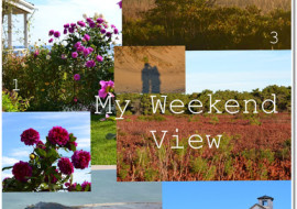 5 Reasons to Love My Weekend View No.29