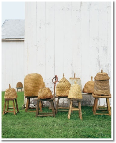 Turn of the century French and American honey bee skeps