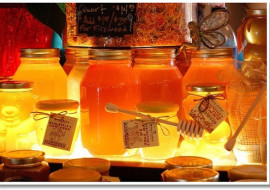 A Look Into Honey Bee Hive Design