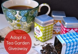 Nudo Has the Perfect Gift for A Tea Lover