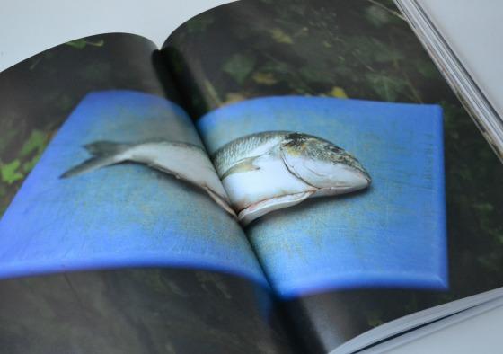 ottolenghi cookbook fish blue