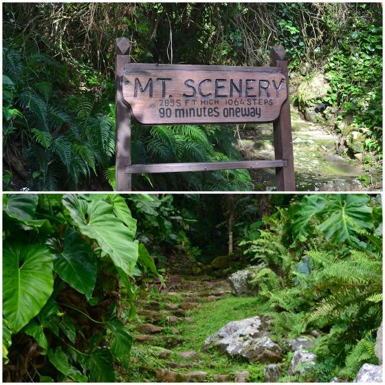 Saba-Hike-Mt-Scenery-Caribbean