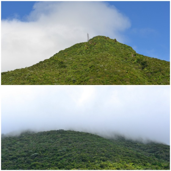 Saba-Mt-Scenery-Hike-Caribbean