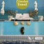 Armchair travel Green With Renvy