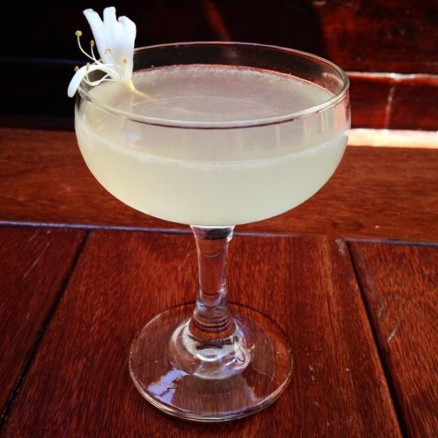 honeysuckle-cocktail-botanical-bartender