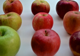 Meatless Monday  Apples