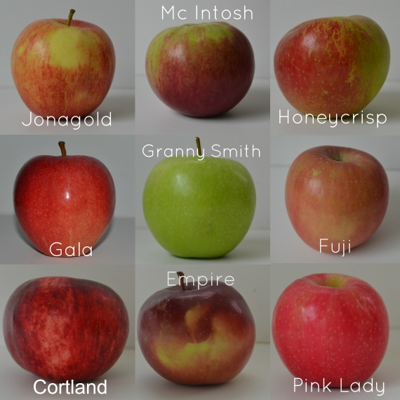 falls finest apples