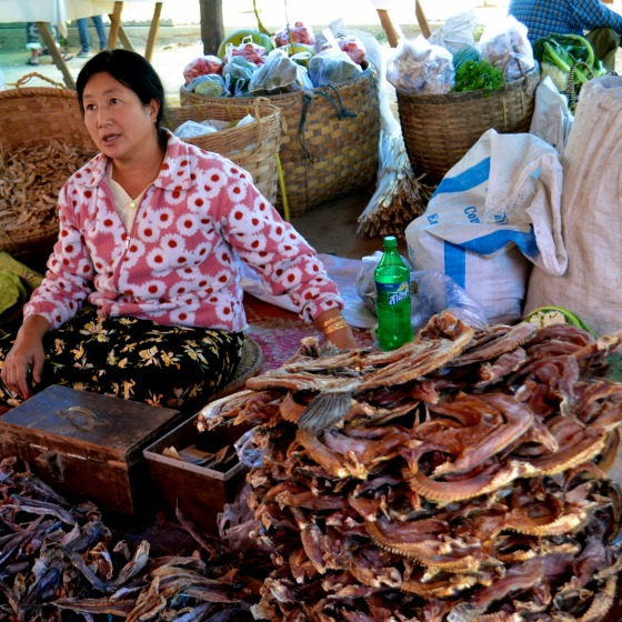 Many kinds of dried fish are used in the Burmese cooking recipes.