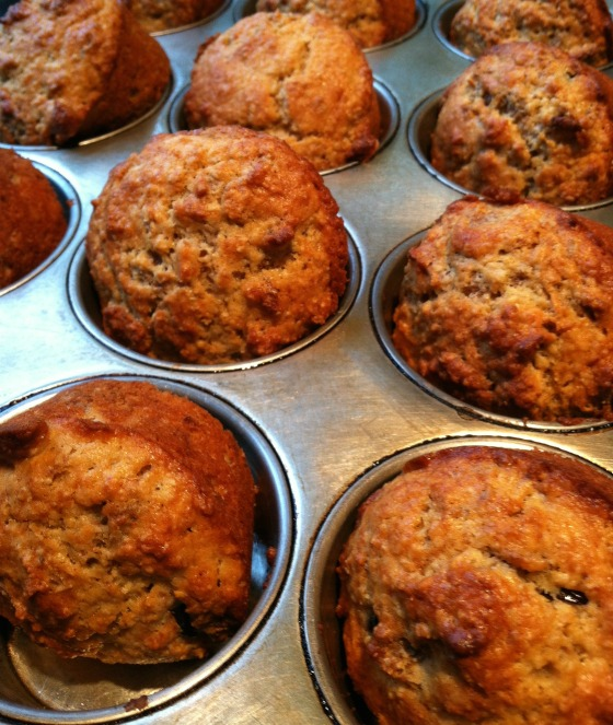 bran muffins with yogurt