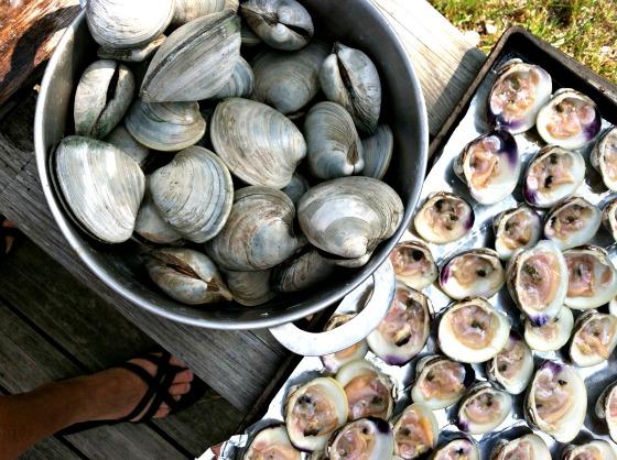 best-bites-2015-clams-nantucket