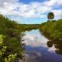 John D. MacArthur State Park, Florida