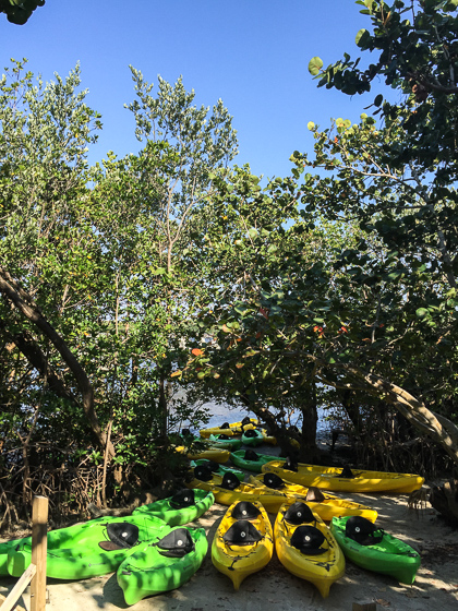 Kayaking at John D. MacArthur State Park