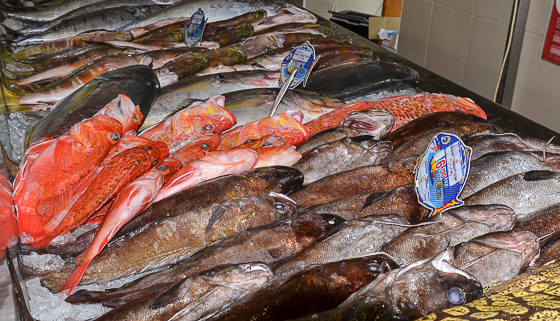 Taste the Azores at a local fish market