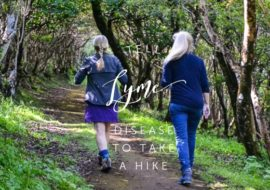 Hiking and Lyme Disease