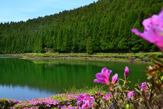 Azores, San Miguel Lagoa Empadadas
