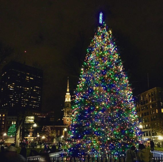Lighting of Christmas tree by the State House in Boston