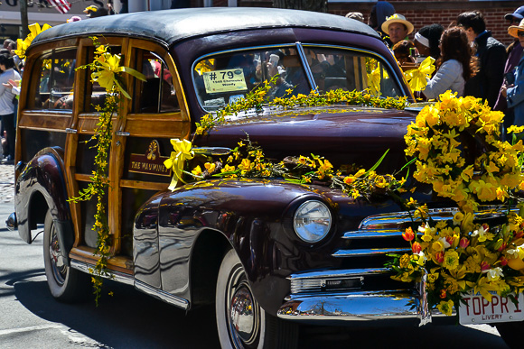 Antique cars at the daffodil festival