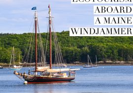 Maine Windjammer Ecotourism Cruise