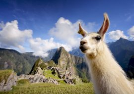 A Bucket List Adventure to Peru
