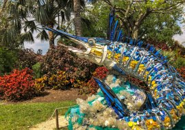 Plastic Pollution: Washed Ashore Oceans