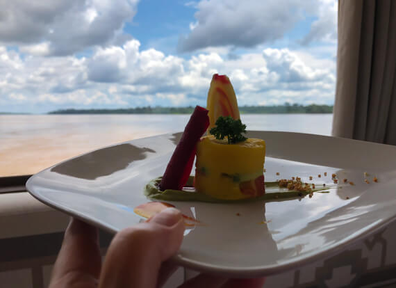 Causa aboard the Delfinlll