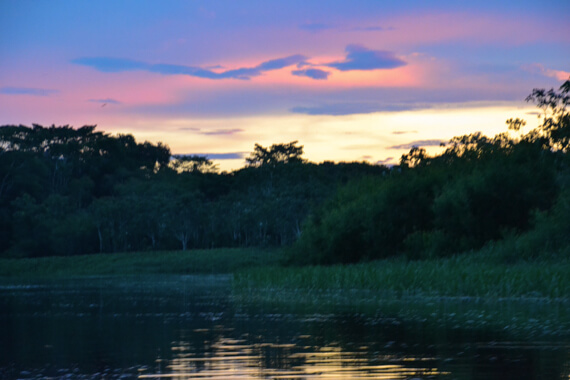 Sunset on the Amazon with AdventureSmith Explorations