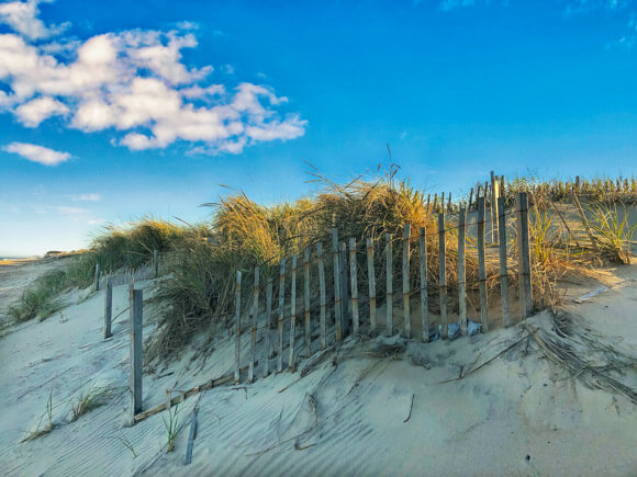 Dunes along the Outer Banks Coastline