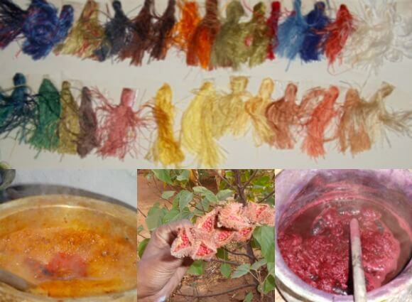 different natural hues for dying organic fibers