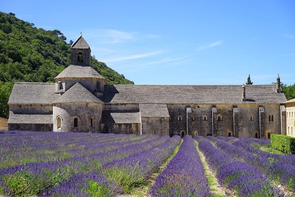 best towns in Provence lavender field