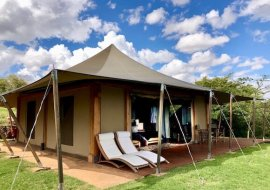 Kenya's Loisaba Tented Camp and Best Things to Do