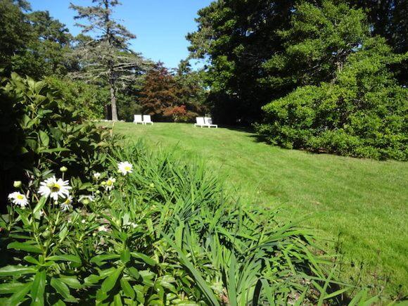 lawn at Marthas Vineyard bed and breakfast Nobnocket Inn