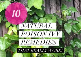 Nature's Poison Ivy Relief