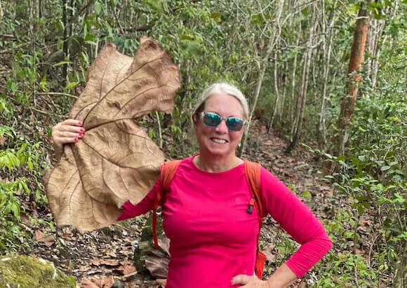 woman using elephant leaf as a fan