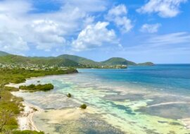 The Best Eco Friendly Things to do Antigua Barbuda