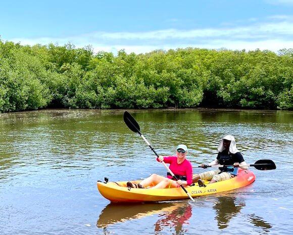 woman and man kayaking in mangroves